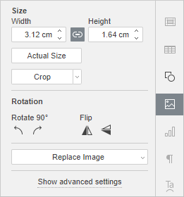 Image Settings Right-Side Panel window